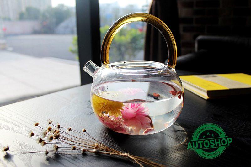 Bình trà thủy tinh tốt nhất