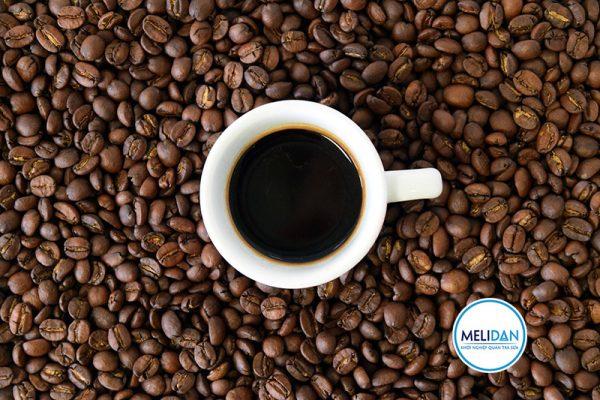 cà-phê-robusta