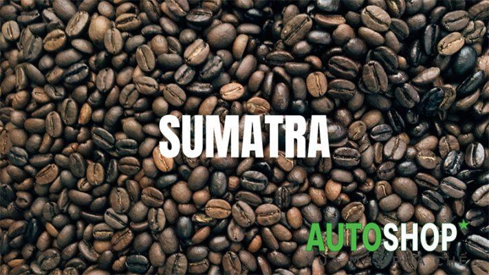 Cà-phê-Sumatra